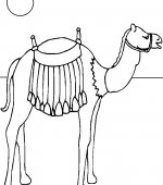 Coloriage chameau gratuit a imprimer - Dessin de chameau ...