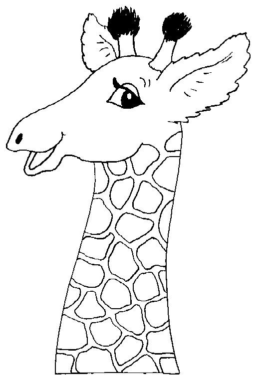 Раскраски головы животных