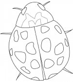 coloriage insectes 008