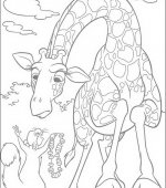 coloriage The Wild 010