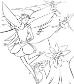 coloriage barbie fairytopia 015