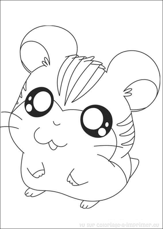 Coloriage A Imprimer Coloriage Hamtaro Petits Hamsters 002