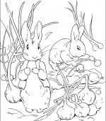 coloriage peter lapin 003