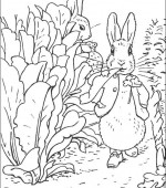 coloriage peter lapin 011