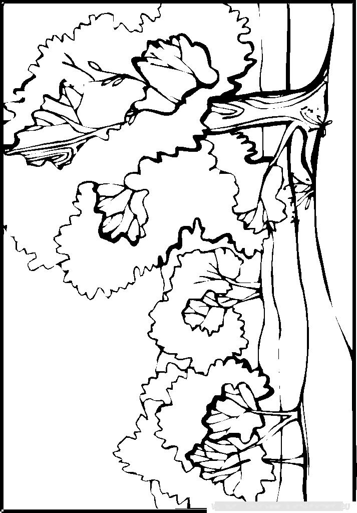 Coloriage imprimer coloriage paysage 002 - Coloriage de paysage ...
