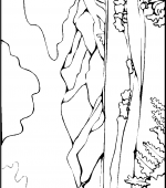 coloriage paysage 007